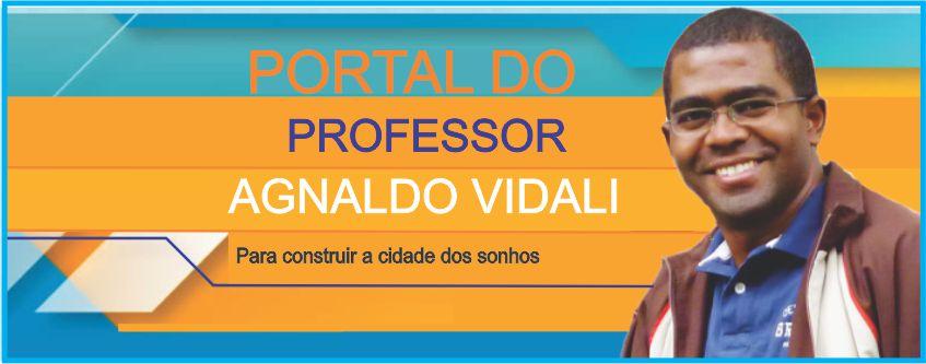 Professor Agnaldo Vidali